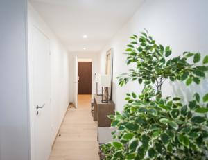 Appartement Luckey Homes - Rue Fre Scamaroni : Appartement Supérieur