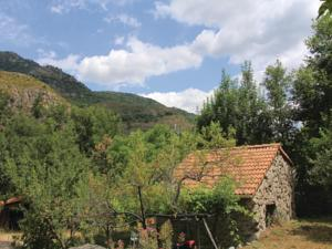 Hebergement Holiday home Le Chazalet P-859 : photos des chambres