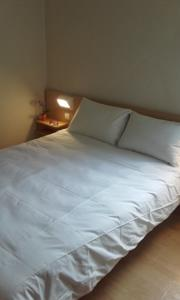 FastHotel Montpellier Ouest : Petite Chambre Double