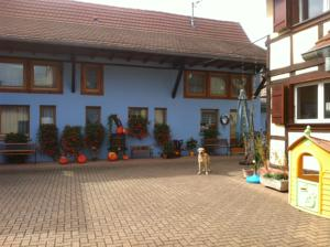 Chambres d'hotes/B&B Chambres d'Hotes Melodies d'Alsace : Chambre Double