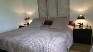 Chambres d'hotes/B&B Chateau Canteloup : photos des chambres