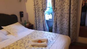 Hotel le Dauphin : Chambre Simple Standard