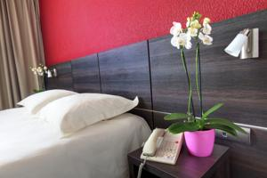 Hotel Best Western Alexander Park Chambery : Chambre Double Supérieure