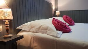 Hotel Le Beaugency : Chambre Double Standard