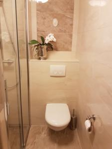 Appartement Appart-hotel Geneva Residence : photos des chambres