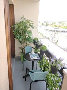 Appartement Confortable T1 Antony-Briand : Appartement Standard