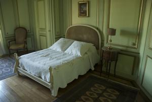 Chambres d'hotes/B&B Chateau d'Epenoux : photos des chambres