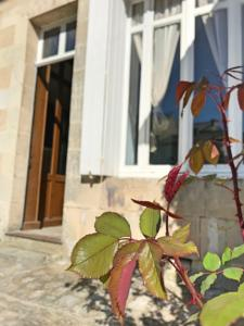 Hebergement THE PAINTED HOUSE * AUTHENTIC CHATEAUNEUF : photos des chambres