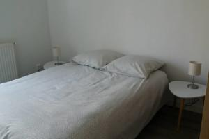 Appartement Le Vivier : photos des chambres