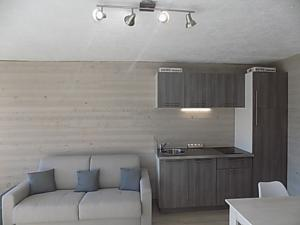 Bel appartement Greolieres les Neiges : photos des chambres