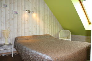 Hotel L'Hippocampe : Chambre Double Standard