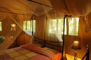 Hebergement Safari Lodge du Grand Bois : Tente de Luxe (3 Personnes)