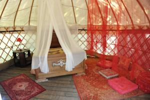 Hebergement Camping Mille Etoiles : Yourte