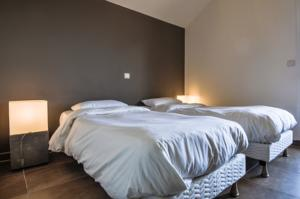 Complexe Residence Hoteliere Spa Les Chataigniers : Chambre Double ou Lits Jumeaux Standard