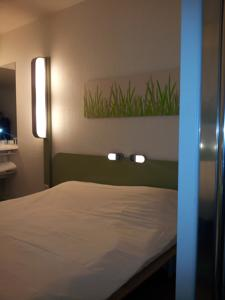 Hotel ibis Budget Gennevilliers Asnieres : Chambre Double