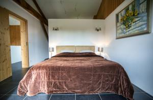 Chambres d'hotes/B&B Chateau Bouynot : Chambre Double Deluxe