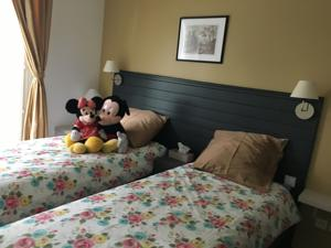 Appartement F&B's Home Disney : photos des chambres