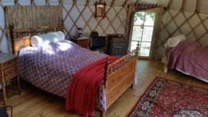 Hebergement Frog Lake Yurts : photos des chambres