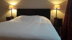 Hotel Les Aubepines : Chambre Double Standard