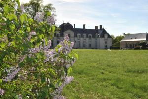 Chambres d'hotes/B&B Chateau La Touanne Avec Piscine Chauffee - With Heated Swimming Pool : photos des chambres