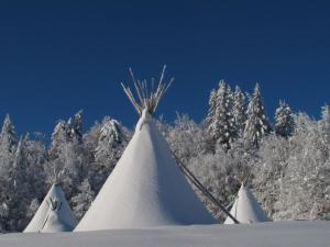 Hotel Village Tipi : photos des chambres
