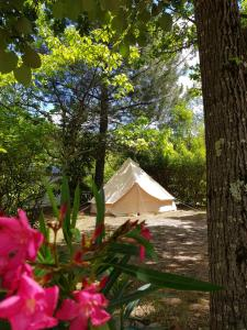 Hebergement Camping HELLO SOLEIL : photos des chambres