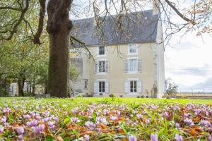 Hebergement Ardilleux Chateau Sleeps 13 Pool WiFi : photos des chambres