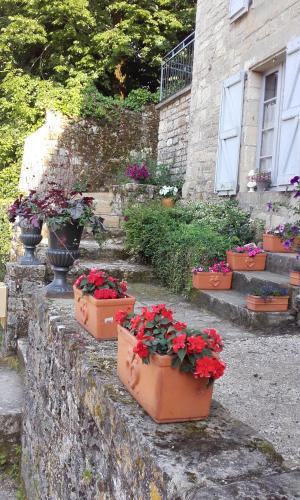 Appartement Maison de Remparts Caylus : Appartement proche de Montrosier