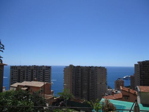 1Bedroom Apartment TOP OF MONACO with seaview : Appartement proche de Peille