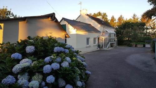 Renard Retreat : Chambres d'hotes/B&B proche de Saint-Thuriau