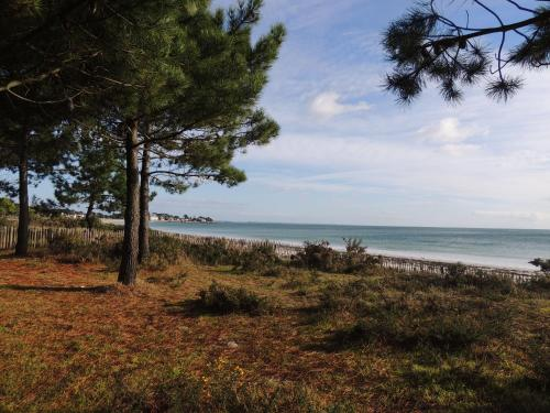 port an dro : Appartement proche de Carnac