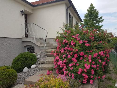 Very nice cosy new appart : Appartement proche de Hipsheim