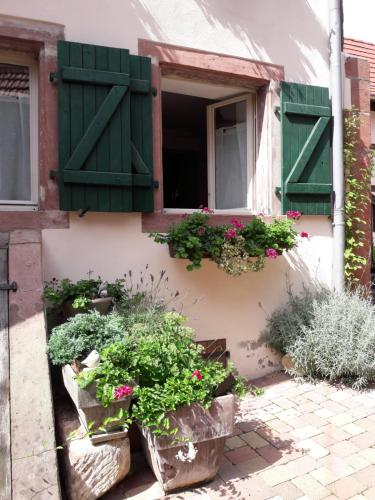 charmant petit appartement en Alsace : Appartement proche de Wickersheim-Wilshausen