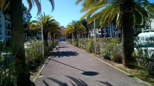 Photo 8 Avenue de Banyuls-Sur-Mer