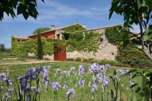 Holiday home with private pool - Herault- Languedoc - South France : Hebergement proche de Mas-de-Londres