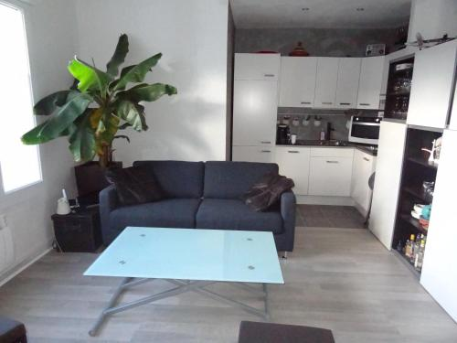 Grand appartement F2 - 2/4 pers