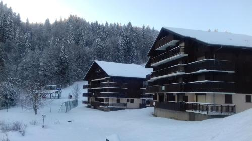 Chalets du Pounant : Appartement proche d'Onnion