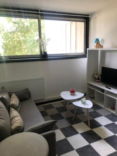 Appartement T1 Grenoble/Grand Place