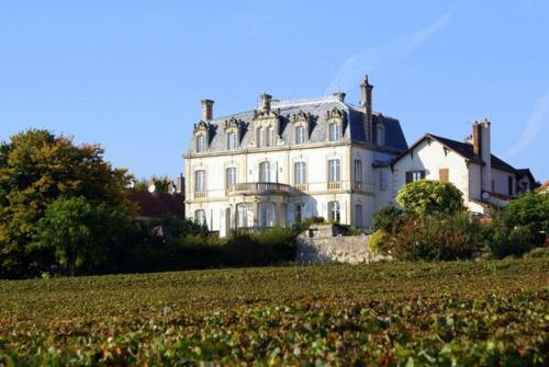 Mercurey Chateau Sleeps 16 Pool WiFi : Hebergement proche d'Aluze