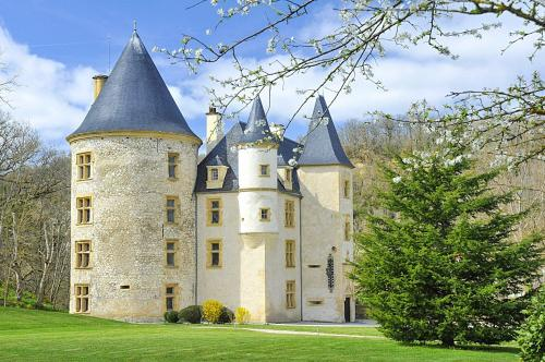 Hébergement Lestelle-de-Saint-Martory Chateau Sleeps 20 Pool