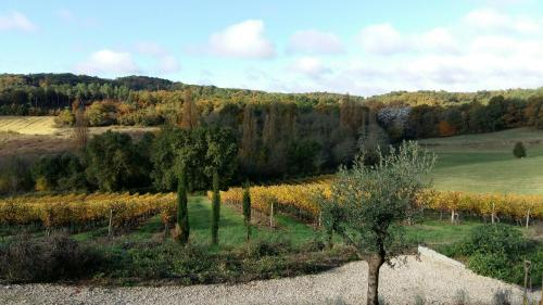 Vineyard View Studio France : Hebergement proche de Saint-Laurent-des-Hommes