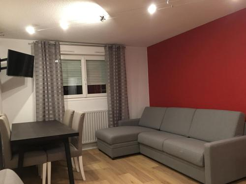 Appartement Apartment Villeurbanne