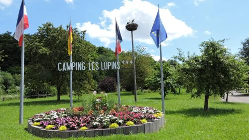 Camping Les Lupins : Hebergement proche d'Altkirch