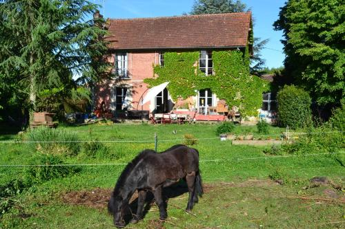 Louanne chambres d' hotes : Chambres d'hotes/B&B proche de Plessis-Barbuise