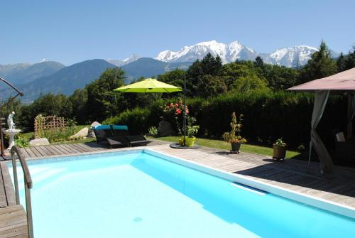 Studio + piscine face au Mt Blanc : Appartement proche de Domancy