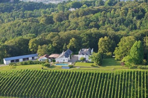 Clos Mirabel Manor - Holiday rental : Hebergement proche d'Aubertin
