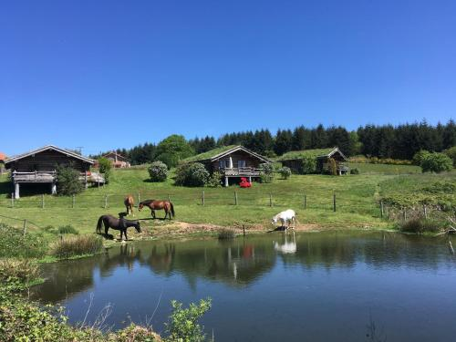 Ottus Ranch : Hebergement proche de Thouron
