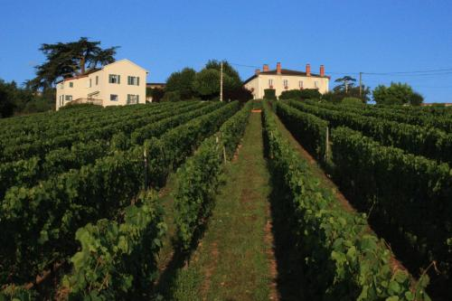 Domaine du Fontenay : Chambres d'hotes/B&B proche d'Ouches